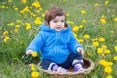 Boy in dandelion field Royalty Free Stock Image