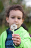Boy with a dandelion flower. Boy holding a dandelion flower in his hand, ready to blow Stock Image