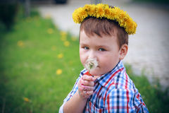 The Boy with dandelion Royalty Free Stock Photos