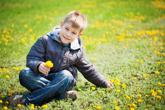Boy with dandelions in a green park. summer Royalty Free Stock Images