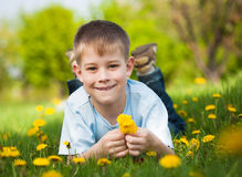 Boy with dandelions in a green park. summer Royalty Free Stock Image