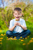 Boy with dandelions in a green park. summer Stock Photography
