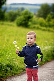 Boy and dandelions Royalty Free Stock Image