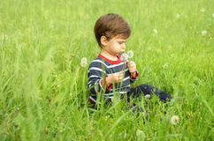 Boy with dandelions on meadow. Cute little boy blowing on dandelions on meadow Royalty Free Stock Photo