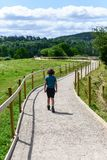 Kide get sad walking away in  the wood royalty free stock photo