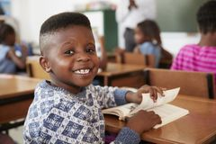 Boy at desk smiling to camera in an elementary school lesson Royalty Free Stock Photo
