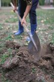 The boy is digging the ground in the park in the fall. Worked process. royalty free stock photos