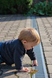 Boy dipping finger in gutter Stock Image