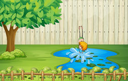 A boy diving in the pond Stock Image