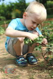 The boy does some gardening. Happy boy is playing in outdoor royalty free stock image
