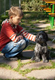 Boy and dog. Boy looks at the his dog stock photo