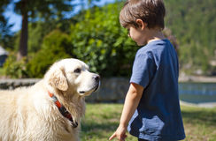 Boy and dog. Boy looking at dog at day time Stock Photography