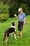 Boy and dog. Cute boy plays with his dog in garden Stock Photo