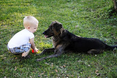 Boy with dog Royalty Free Stock Images