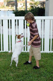 Boy and dog. A boy playing ball with a jack russell terrier in the back yard Royalty Free Stock Image