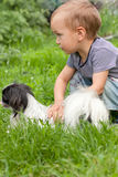 Boy with a dog. Royalty Free Stock Photo