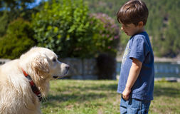Boy and dog. Boy looking at dog at day time Stock Photos