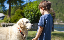 Boy and dog. Boy looking at dog at day time Royalty Free Stock Photography