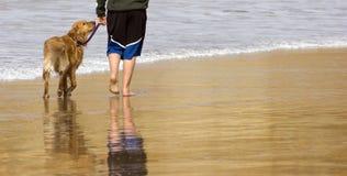 Boy Pacific Ocean Beach Walks Irish Setter Dog royalty free stock photo