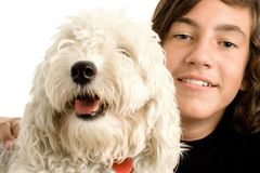 Boy and dog Royalty Free Stock Image