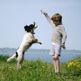 Boy and dog. Young boy playing with dog in park Royalty Free Stock Image