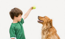 Boy with Dog. Boy Playing Ball with Dog stock images