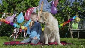 Boy, dog and banana stock footage
