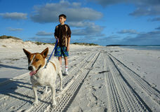 Boy and dog on beach Stock Image