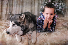 Boy with a dog on the bed Royalty Free Stock Images