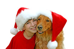 Boy and Dog in Christmas Hats Stock Images