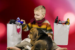 Boy and dog consider gifts Royalty Free Stock Image