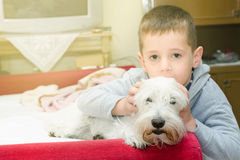 Boy with dog. Boy lay and sleep with his dog, best friend Royalty Free Stock Photo