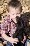Boy and dog in leaves Royalty Free Stock Photography