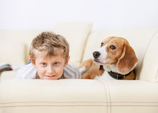 Boy and dog lying on sofa together Royalty Free Stock Image