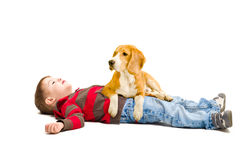 Boy and a dog lying  together Stock Photos