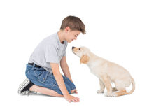 Boy with dog over white background Royalty Free Stock Photo