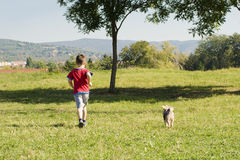 Boy with dog. Boy play with dog in the park Royalty Free Stock Images
