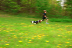 Boy dog play Stock Images