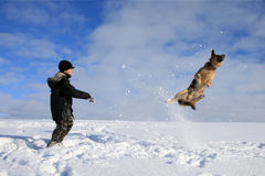 Boy and dog playing in snow stock image