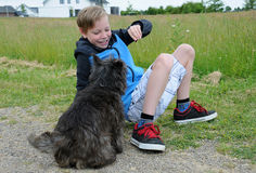 Boy and dog. Boy plays with his cairn terrier Stock Image