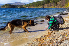 A boy and a dog Stock Images