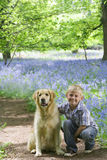 Boy and dog posing in field of bluebell flowers Royalty Free Stock Photos