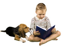 Boy and dog read the book Stock Photography