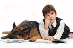 Boy and dog read the book, the textbook. Boy, child, pupil of school and dog, German shepherd lie and read textbook, book Stock Photography