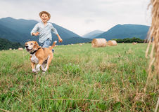 Boy and dog run together on the field with haystacks Royalty Free Stock Photography