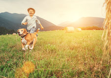Boy and dog run together on the field with haystacks stock photos