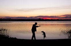 Boy and dog silhouette at sunset lake. Boy is playing with dog at lake during sunset Royalty Free Stock Photos