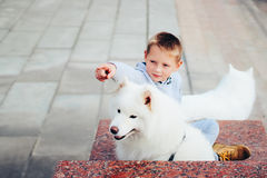 Boy and dog Royalty Free Stock Photos