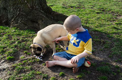boy and dog Stop eating my ice cream!. Little boy tries to get hi pug dog to stop eating his fallen ice cream to no avail Stock Image