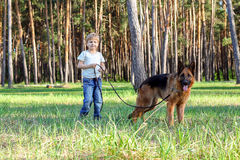 The boy and the dog for a walk Royalty Free Stock Photography
